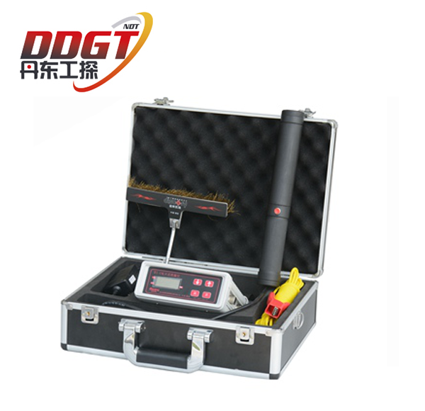 DGT D1-C Holiday Detector
